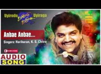 Anbe Anbe Nee En Pillai Song Lyrics - Uyirodu Uyiraga