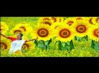 Azhagana Ratchashiyae Song Lyrics