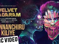 Chinnanchiru Kiliye Song Lyrics - Velvet Nagaram